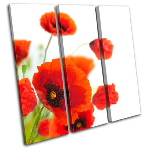 Poppies Flower Floral - 13-0814(00B)-TR11-LO